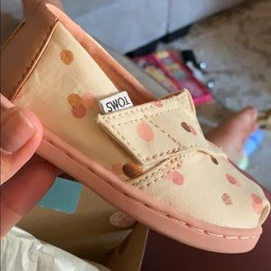 BNIB Toms toddler shoes